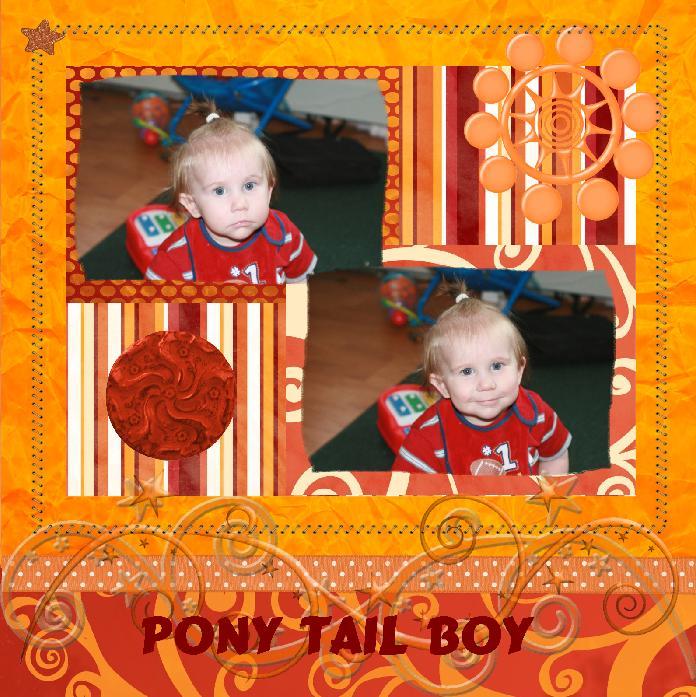 ponytailboy
